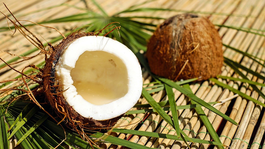 coconut-1501334_1280
